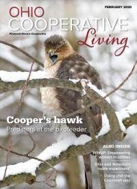 magazine cover with a hawk on it